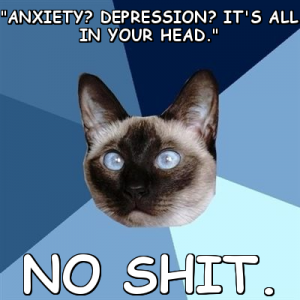 "Image is of Chronic Illness Cat - a siamese with blue eyes. Text says ""Anxiety? Depression? It's all in your head. NO SHIT."""