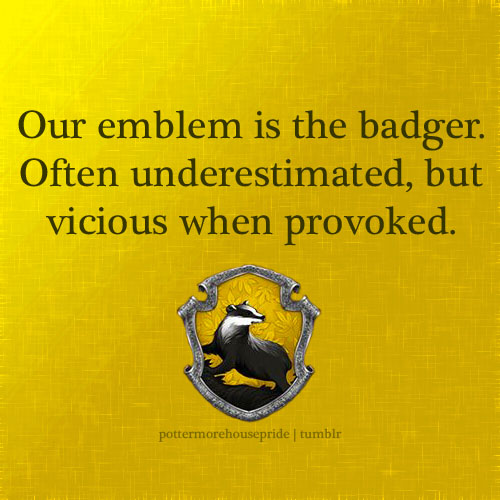 "Image is of a badger (the Hufflepuff logo) on a yellow background. Text reads ""Our emblem is the badger. Often underestimated, but vicious when provoked."""